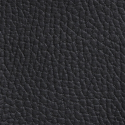 Beluga Blackbeard Black