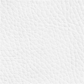 Beluga Pure White