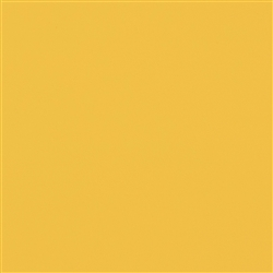 Catalina Sungold Yellow