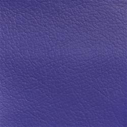 Navigator Purple