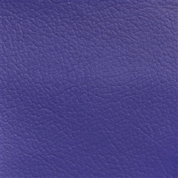 Navigator Purple Passion