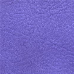 Tradewinds Pomona Plum Purple